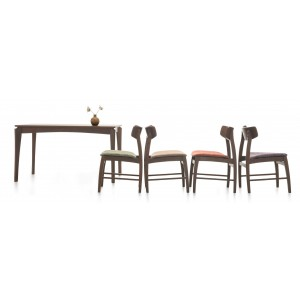 Junny Dining Table - Medium Size With 4 Chairs